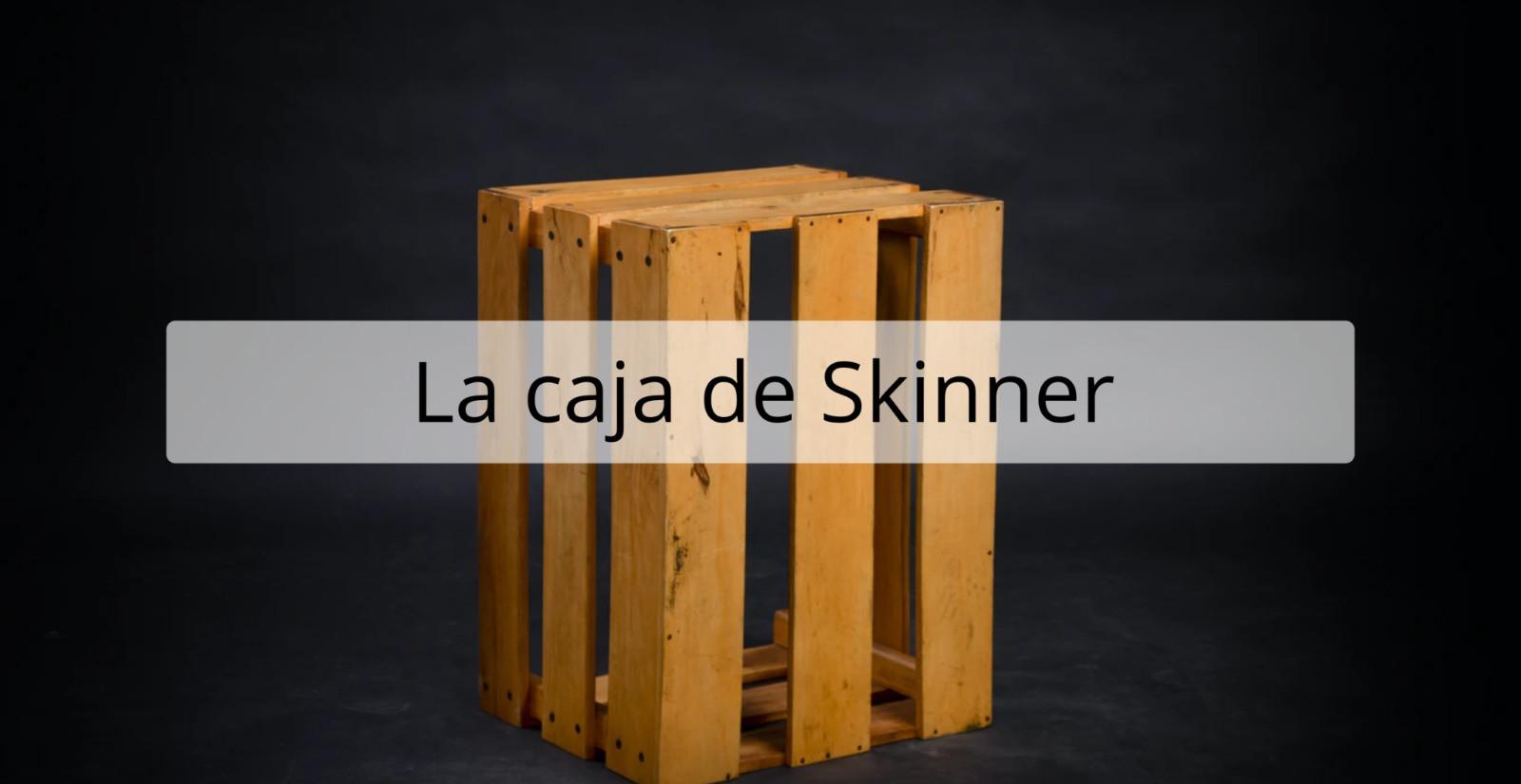 Resistencia Lúdica - La caja de Skinner (Dead of Night)